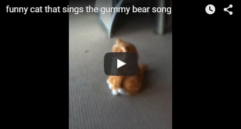 Gummibar The Gummy Bear Song Singing Cat
