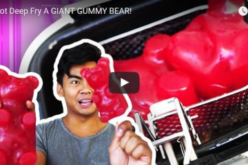 gummy bear, deep fried, fried food, bear, gummy bear candy, gummybear, gummibar, gummy bear song