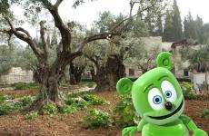 mount of olives, israel, hebrew, hebrew song, hebrew music, childrens music, kids music, kids song, gummy bear, gummybear, gummibar, i am a gummybear, gummy bear song, the gummy bear song, travel, tourism,