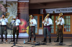 brass band cover of the gummy bear song